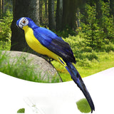 Beautiful Life Like Artificial Parrot