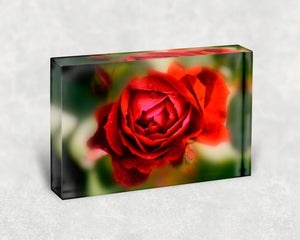 Remembrance Rose Acrylic Block