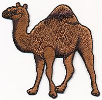camel thread applique