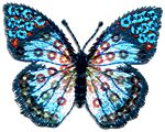 butterfly large blue thread applique