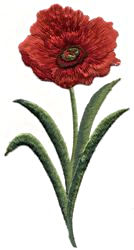 poppies thread applique