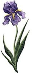 tall purple iris thread applique