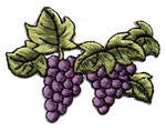 right facing grapes thread applique
