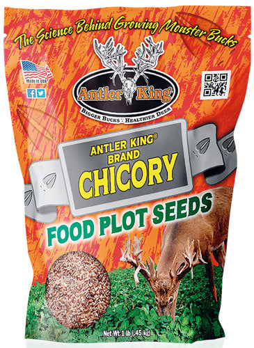 Antler King Chicory 1# Bag - Perennial 1-4 Acre