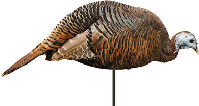 Montana Decoy Turkey Dinner - Belle Hen