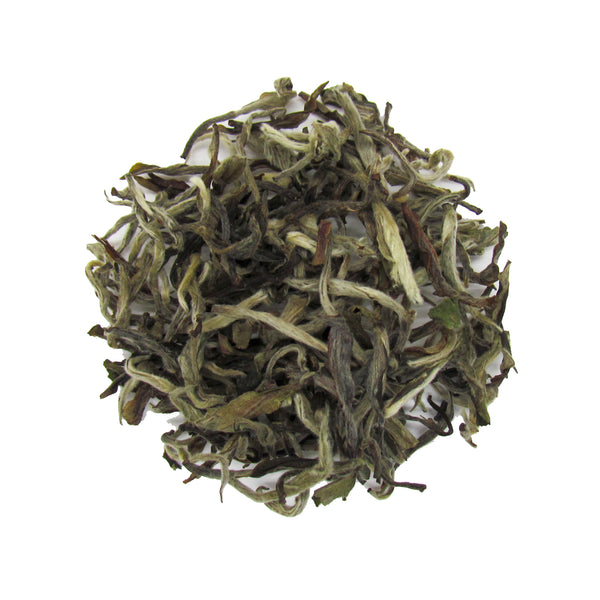Himalayan White Tea from the Foothills of the Himalayas in Nepal | Organic White Tea