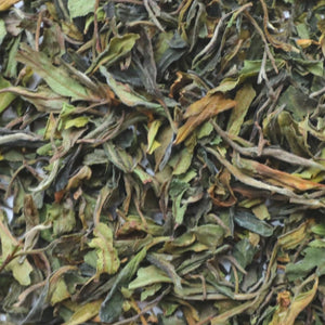 Elegant and Organic White Tea Packed with Antioxidants