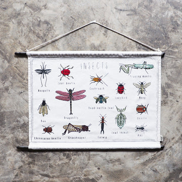 Numero 74 School Poster Creative Kit - Insects