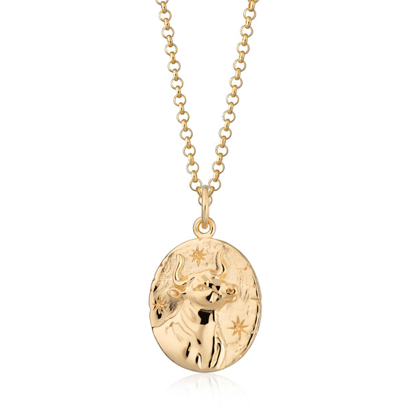 Taurus Zodiac Pendant Necklace