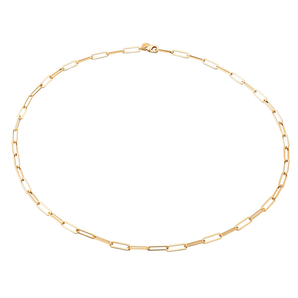 Long Link Chain Choker Necklace