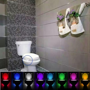 LED Toilet Bowl Night Light