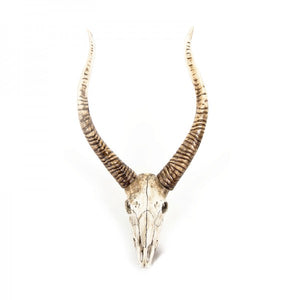 Goat Skull Wall Decor