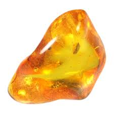 Amber - Stone of Clearing