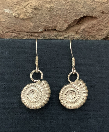 Sterling Silver 925 Fossil Earrings