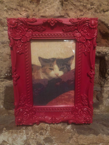 Cat Print and Pink/Red Frame