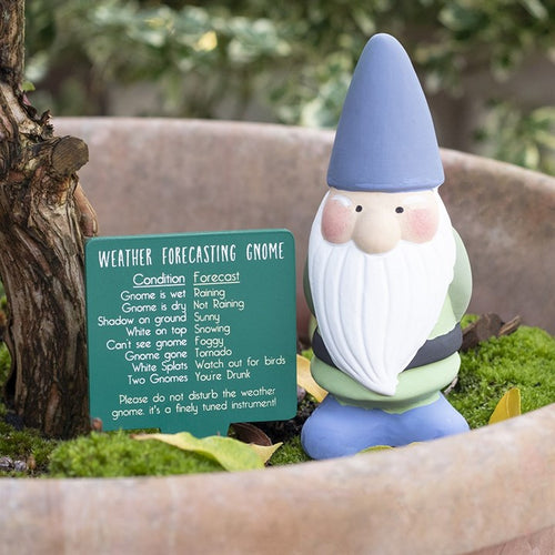 TERRACOTTA WEATHER FORECASTING GNOME - Miss Pretty London UK Limited