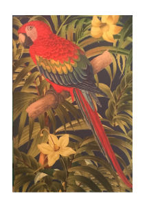 Red Parrot Bird Notebook