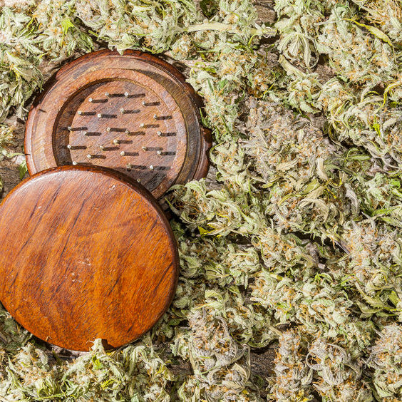 Everything You Need to Know About Weed Grinders
