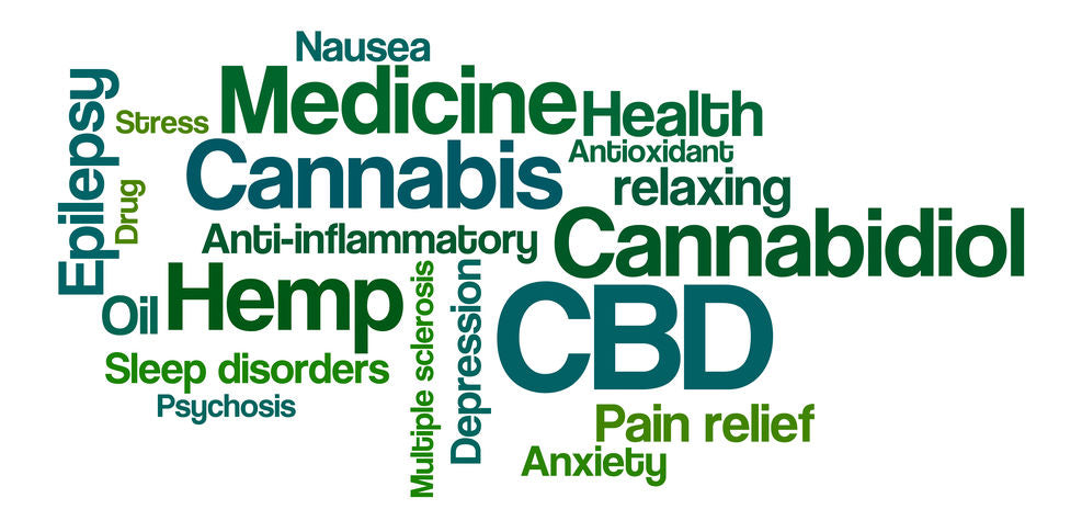 What is CBD? Let's explore it together