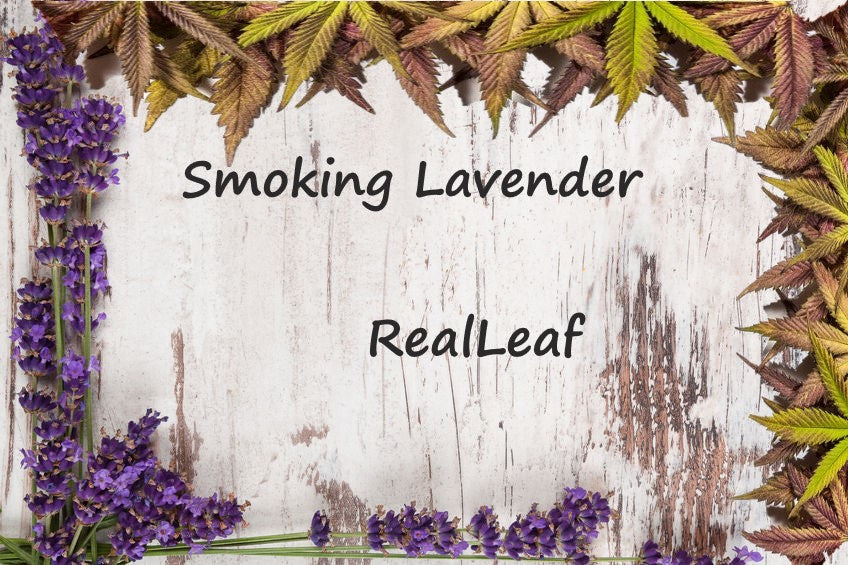 SMOKING LAVENDER THE HIDDEN SECRET OF THE PURPLE BLEND