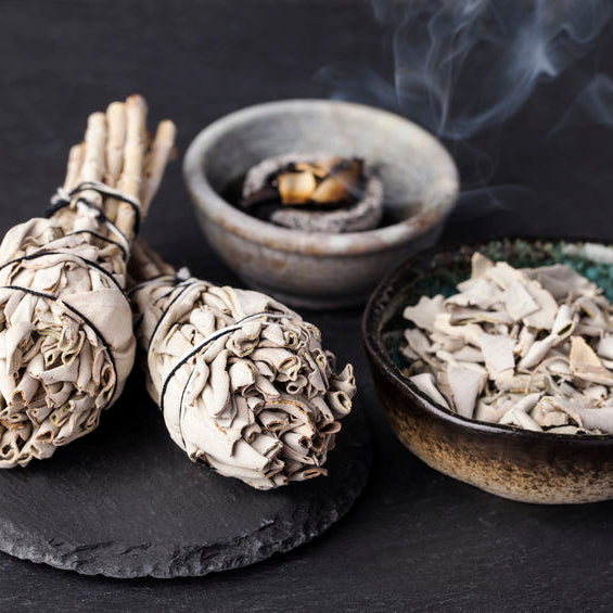 smoing sage by realleaf