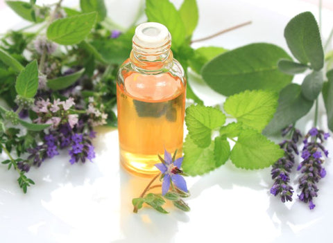 Oil mint qith health benefits