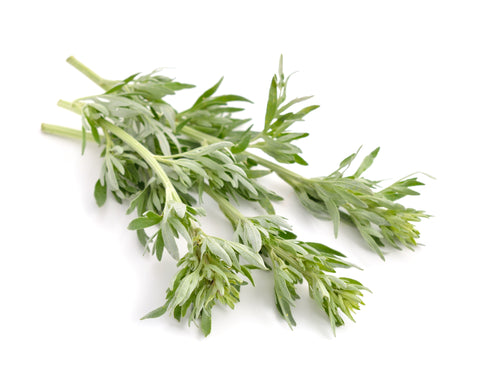 Mugwort smokable herbs