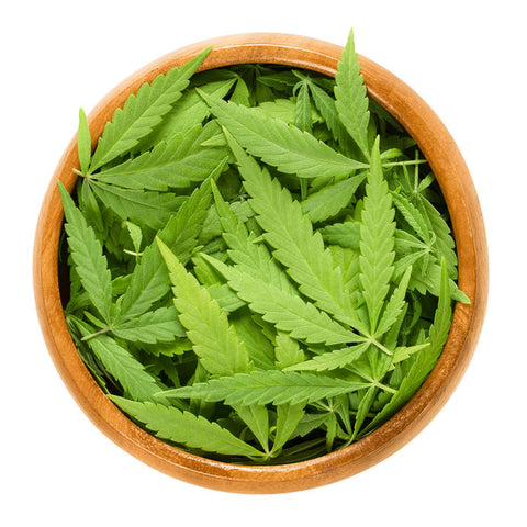 Cannabis mixed with damiana increase the benefits of the herbs and contain no addictive ingredients
