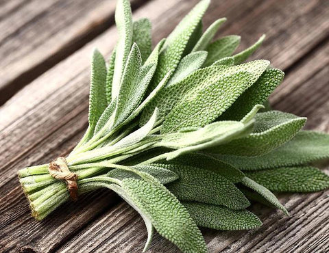 Sage | Real Leaf tobacco substitutes & herbal cigarettes