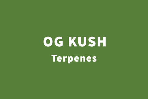 og kush herbal smoking blend by real leaf