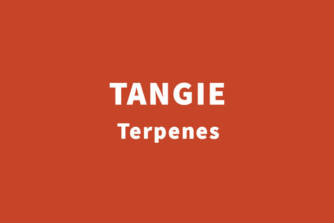 tangie terpenes by real leaf