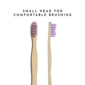 Organic Bamboo Toothbrush for Adults - Purple