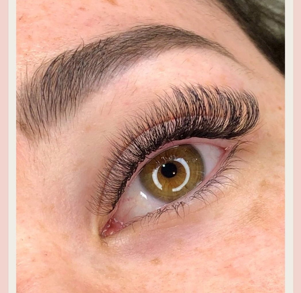$97 PRE MADE LASH WORKSHOP (excluding gst)