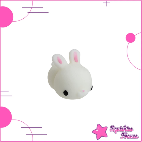 Mini Squishy lapin