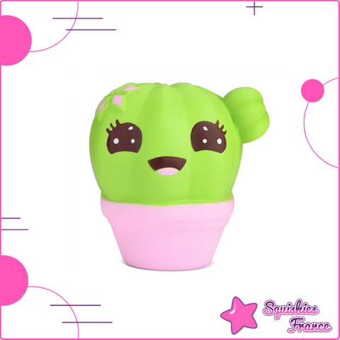 Squishy cactus kawaii - Squishies France