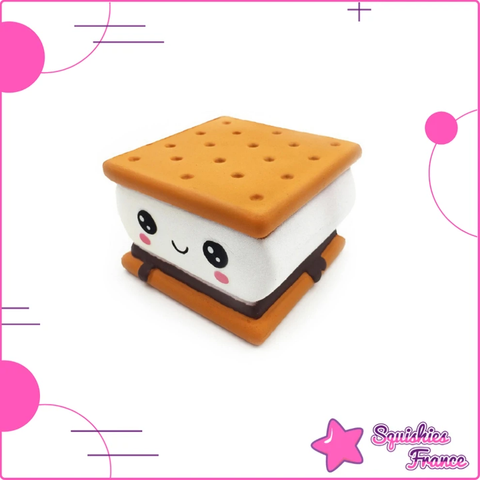 Squishy biscuit - Nourriture - Squishies France