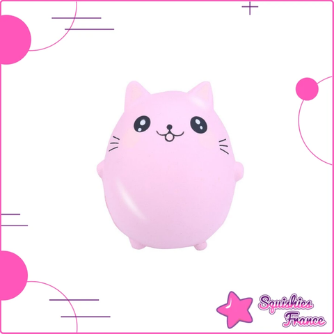 Squishy Chaton Rose Kawaii - Animaux, Kawaii - Squishies France