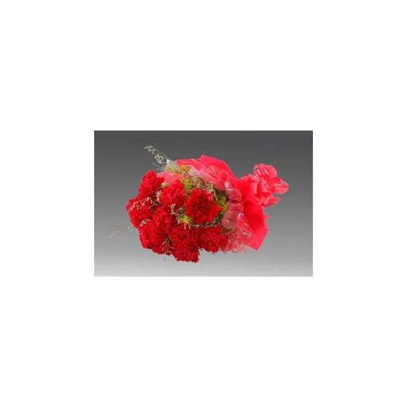 Charming Carnations