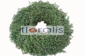 Corn Grass Wreath 32Cms