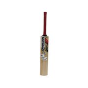 Spartan Kashmir Willow MSD King Cricket Bat