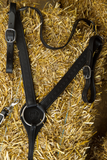 Imus 4-Beat Breast Collar-Phoenix Rising Saddles Gaited Horse Tack