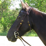 Imus 4-Beat Trail Bridle-Phoenix Rising Saddles Gaited Horse Tack