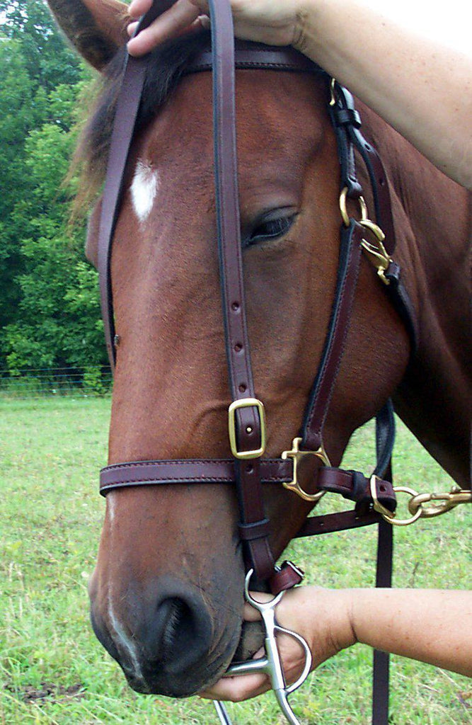 Bridles Headstalls Custom Leather Horse One Ear Western Bridle Show Pleasure Trail Horse Tack Sporting Goods Cub Co Jp
