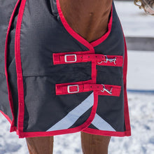 Load image into Gallery viewer, Canadian Horsewear Crimson Rainsheet