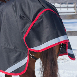 Canadian Horsewear Crimson Rainsheet
