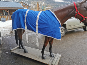 "80"" Blue Stable Blanket"