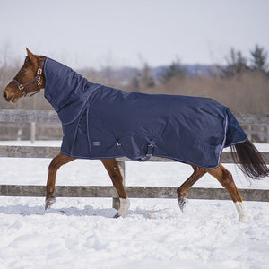 Canadian Horsewear Diablo Navy 300gm Turnout
