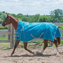 Load image into Gallery viewer, Canadian Horsewear Meridian 160gm Insulated Rainsheet