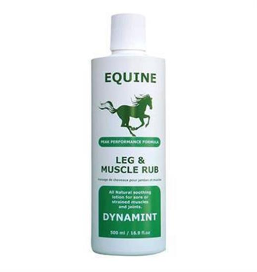 Dynamint Equine Muscle Rub 500mL