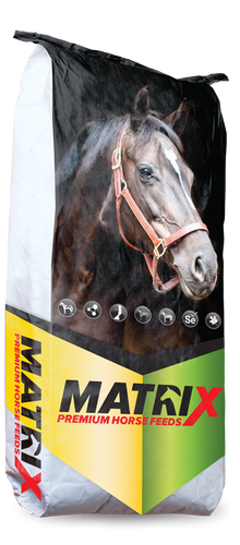 Matrix Mature Horse Text 20kg